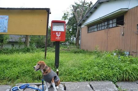 20140822日光丸ポスト①15