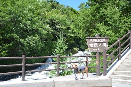 20140822竜頭の滝02
