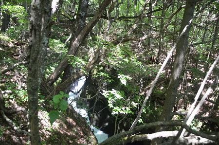 20140822竜頭の滝07