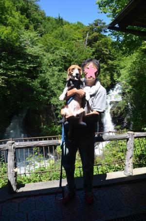 20140822竜頭の滝12
