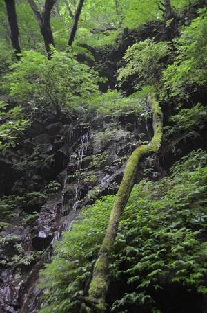 20140822裏見の滝08
