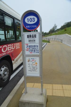 20140823かき氷10