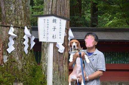 20140823二荒山神社12