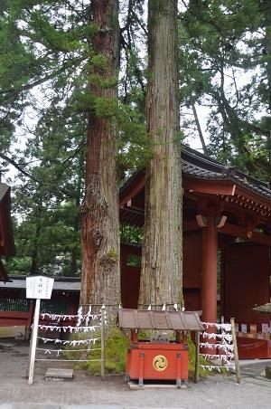 20140823二荒山神社16