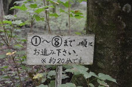 20140823滝尾神社04