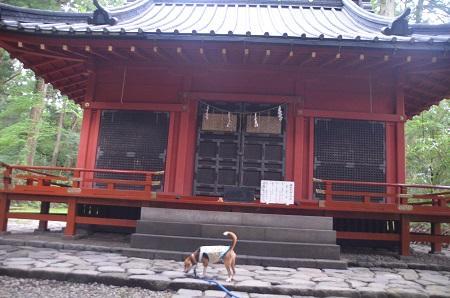 20140823滝尾神社16