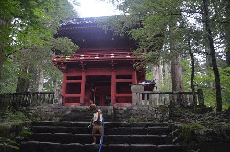 20140823滝尾神社14