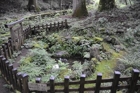 20140823滝尾神社28