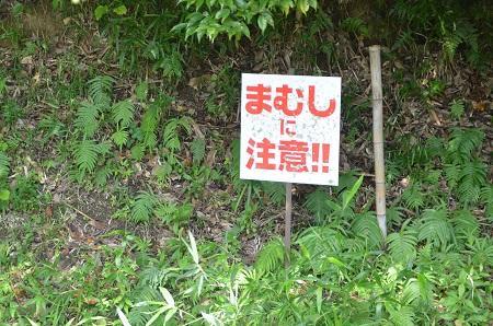 20140909中郷小学校14