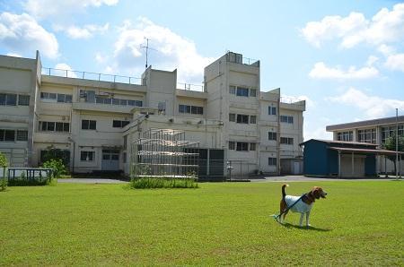 20140909中郷小学校13