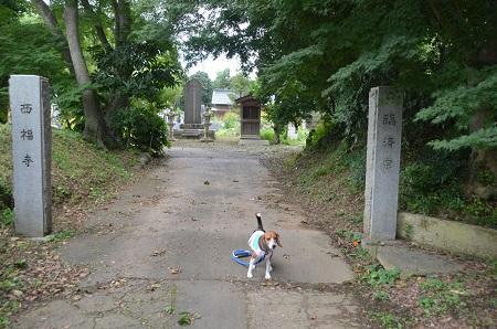 20140910 岩戸城址01