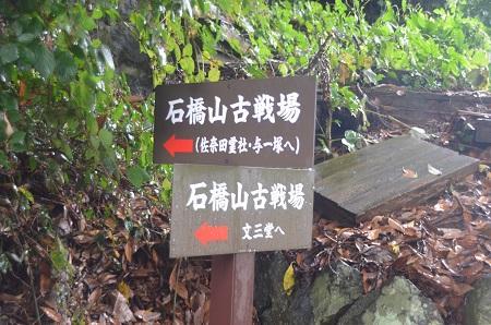 20140925石橋山合戦場17