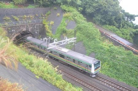 20140925石橋山合戦場21