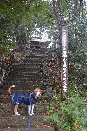 20140925石橋山合戦場19