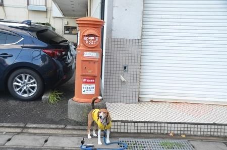 2014.0925丸ポスト東伊豆06