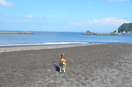 20140925オレンジビーチ24