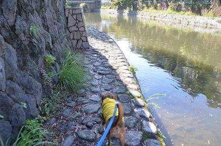 20140925松川08