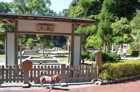 20140926万葉公園06