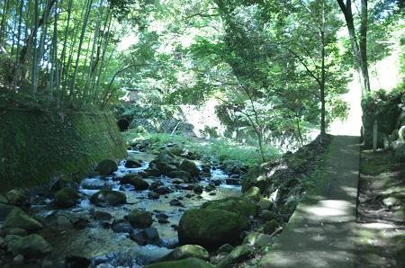 20140926万葉公園10