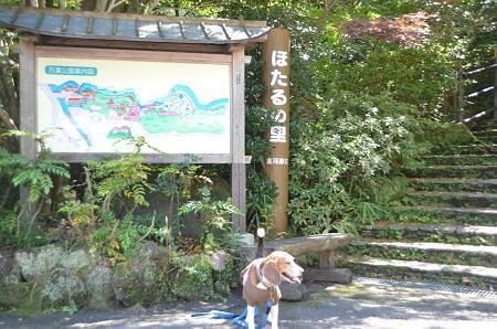 20140926万葉公園20