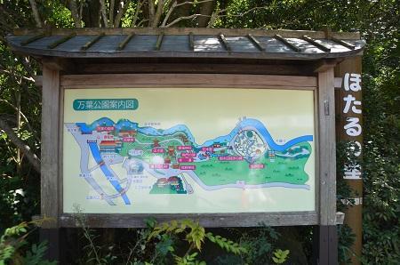 20140926万葉公園19