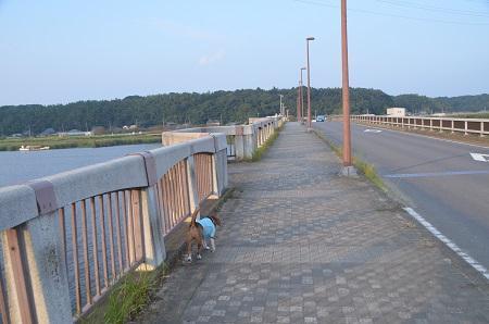 20140930佐倉ふるさと広場15