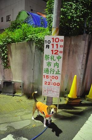 20141010佐倉秋祭り01