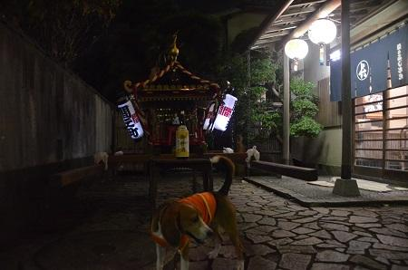 20141010佐倉秋祭り13