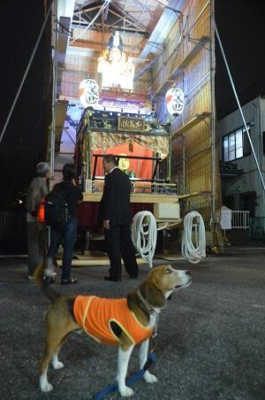 20141010佐倉秋祭り25