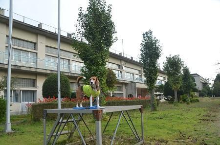 20141011 東小学校03