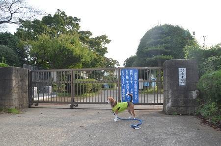20141011 東小学校22