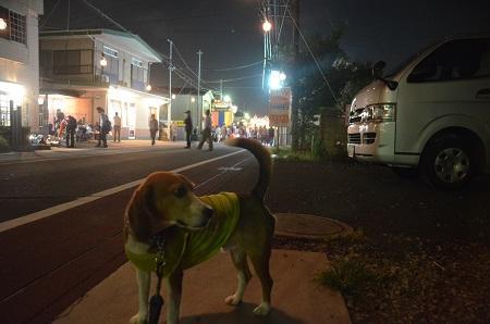 20141011 佐倉秋祭り②12