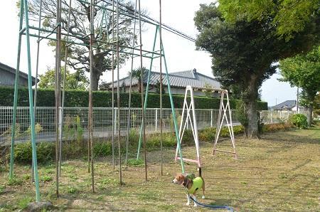 20141011利北分校20