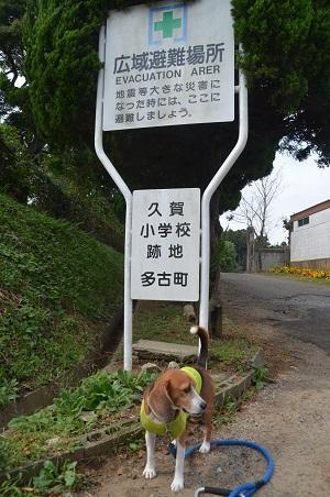 20141014旧・久我小学校跡01