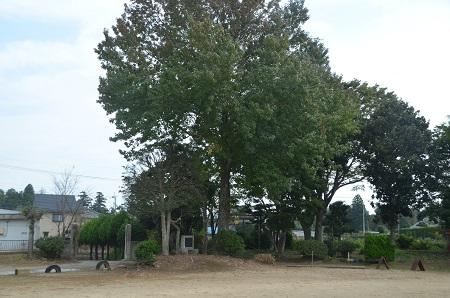 20141014旧・久我小学校跡12
