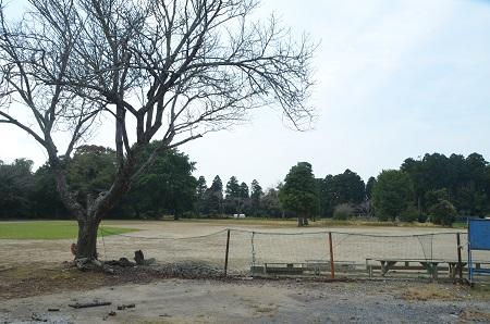 20141014旧・久我小学校跡14