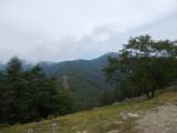 七ツ石山から雲取山を望む
