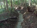 石畳の登山道