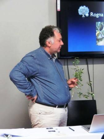 web2014.07オリーブオイルソムリエ栽培