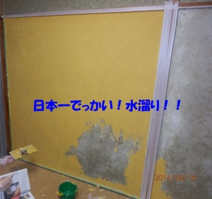 P8160009.jpg