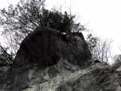 2014-04-13 三ノ木戸の岩場 016 (640x480)