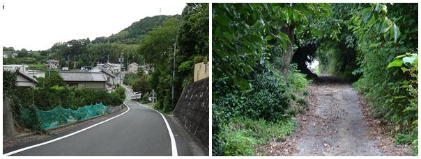 姫街道11