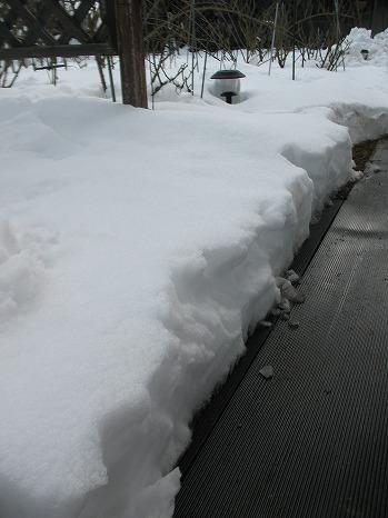 雪 (10)