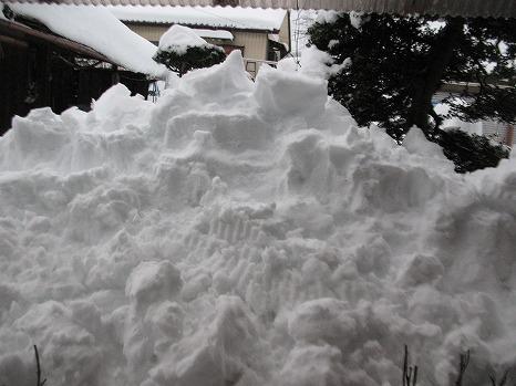 雪 (5)