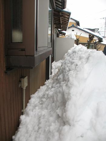 雪 (8)