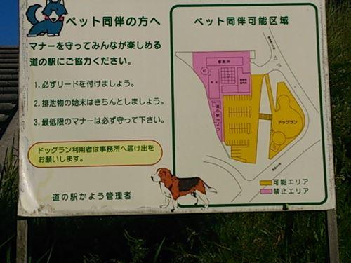 奥津湖家族会外伝 (4)