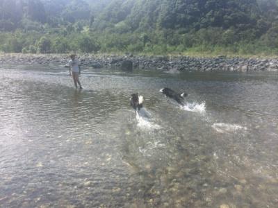 川で塩抜き914