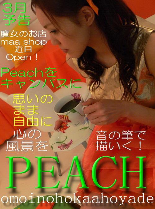 20140301a.jpg
