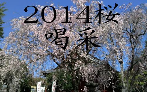 20140420kiyomi.jpg