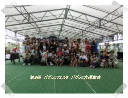 CIMG9668-01.jpg
